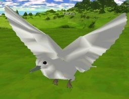 Click Picture To View More Larger, Higher Resolution Pictures of this Satin Dove Avatar