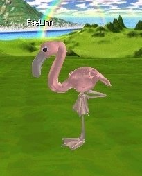 Click Picture To View More Larger, Higher Resolution Pictures of this Pink Flamingo Avatar